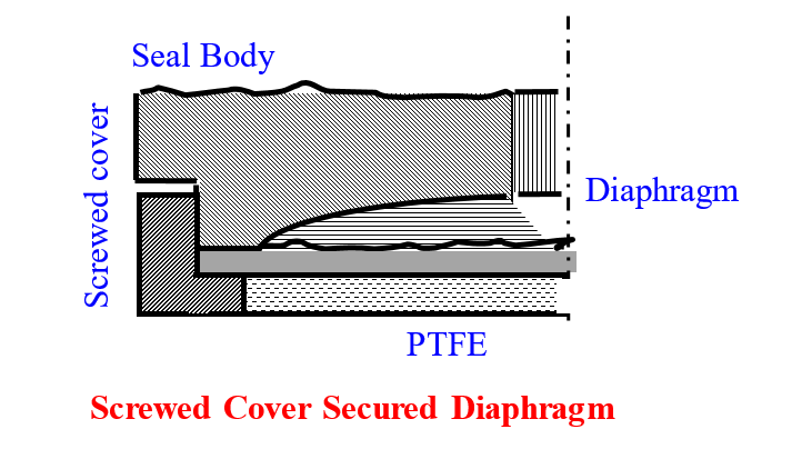 Diaphragm Sandwiched Between PTFE Gasket and Seal Body